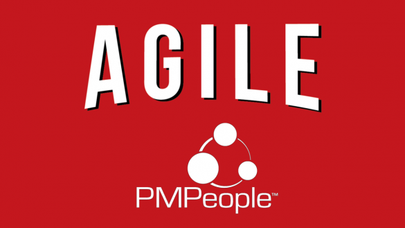 PMPeople is the tool for the Project Economy